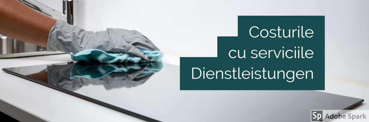Costurile cu serviciile in Germania Dienstleistungen