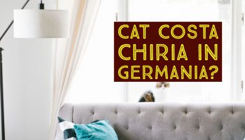 Cat costa chiria in Germania