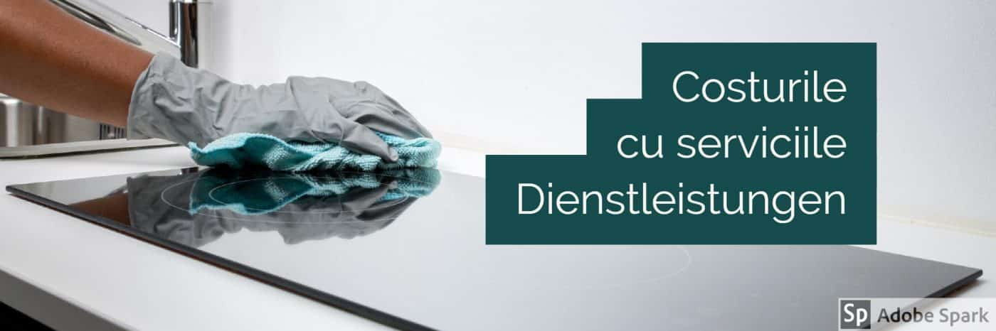 Impozit Germania - Costurile cu serviciile in Germania Dienstleistungen