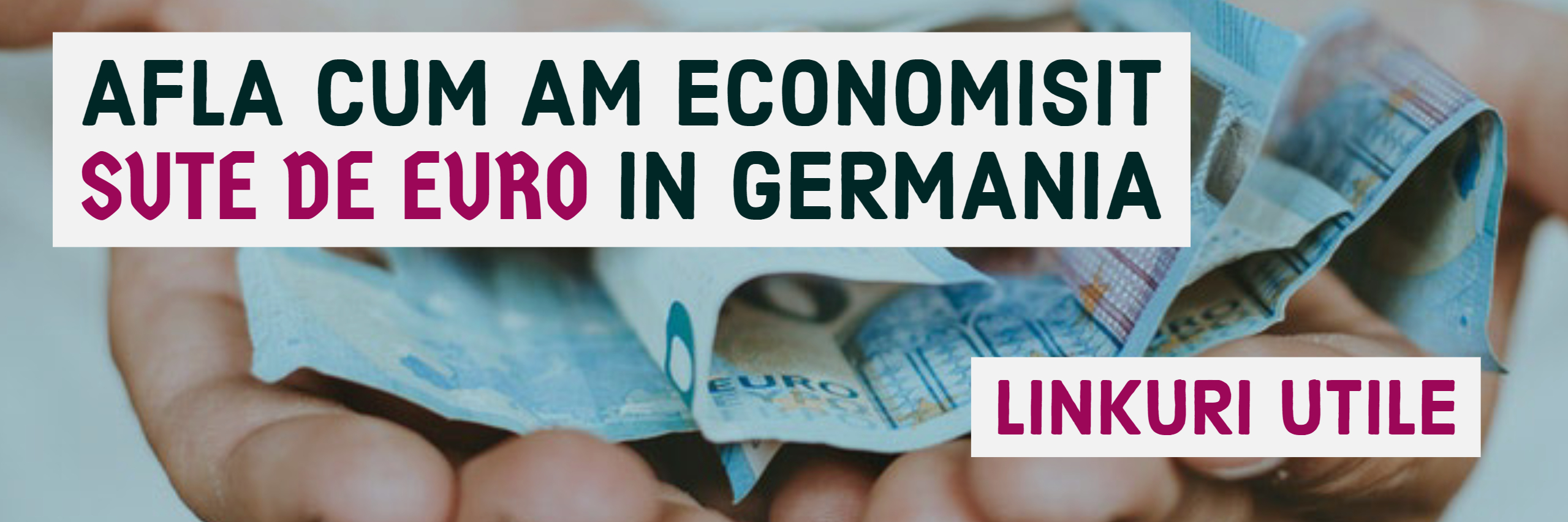Economii in Germania-Linkuri utile